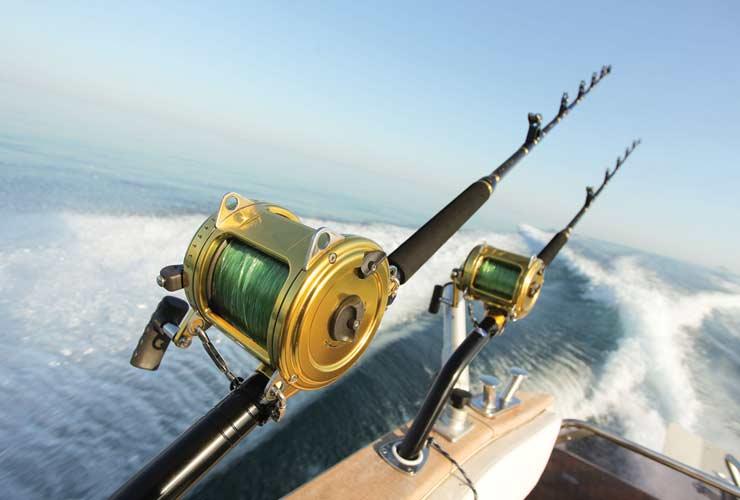 How Seasonal Changes Affect Fishing